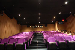 Goethe-Institut Washington screening room