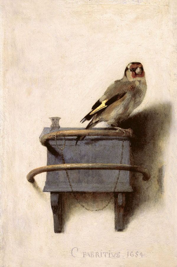The Goldfinch 1654 by Carel Fabritius