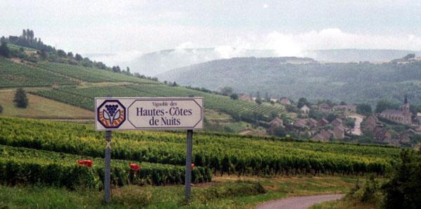 Burgundy: Haute Côte des Nuits vineyards