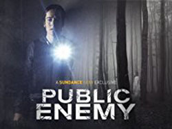 Public Enemy Season 1