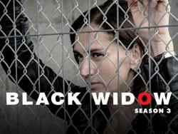 Black Widow S3 (Penoza)